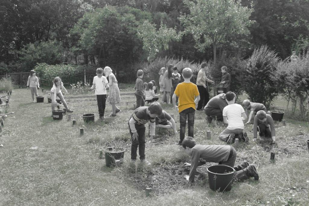 Gartenarbeit auf den Schülerbeeten