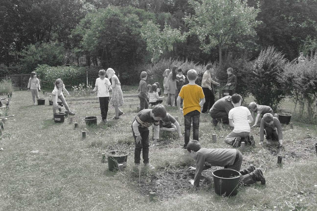 Gartenarbeit_auf_den_Schülerbeeten_4_eingefärbt_2017-07-16_v1-0_mam