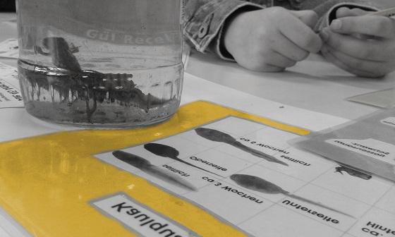 Teich- und Bodentiere