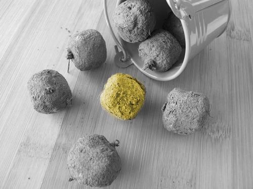Seedballs_01_eingefärbt_2019-01-24_v1-0_ex