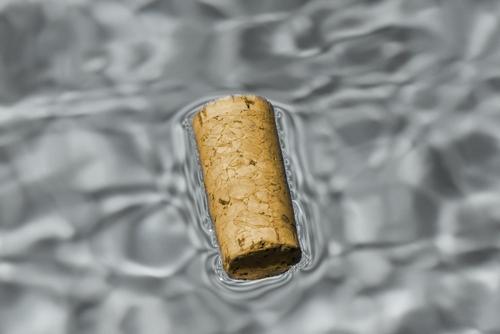 Wasser erkunden
