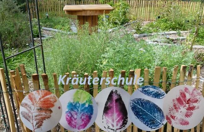 Kräuterschule